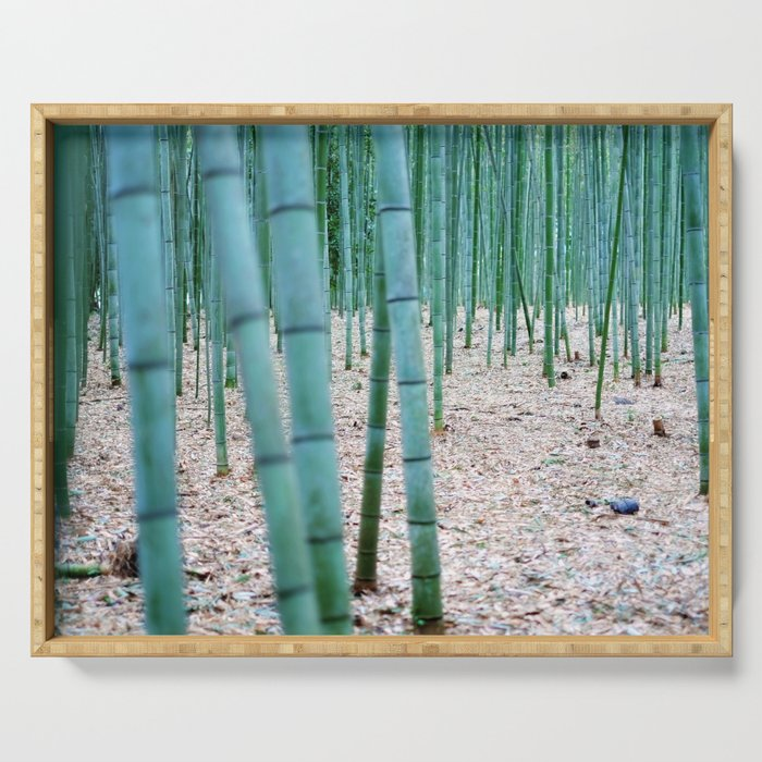 The Bamboo Grove, Arashiyama, Kyoto Serving Tray