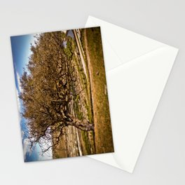Wind Blown Stationery Cards