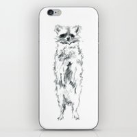 racoon iPhone & iPod Skins featuring Wild Racoon by Girard Camille