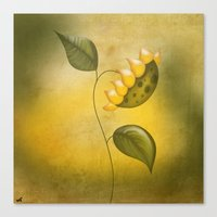 sunflower Canvas Prints featuring Sunflower by flamenco72