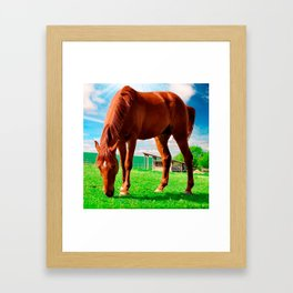horse eating grass Framed Art Print