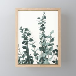 Eucalyptus Leaves Framed Mini Art Print