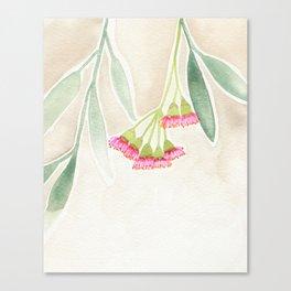 Gum Tree Sketch Canvas Print