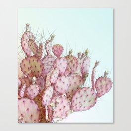 Pink Cactus, Sky Blue, Soft Colors, Nature, Canvas Print