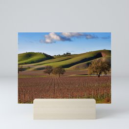 Templeton Vineyard Mini Art Print