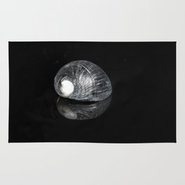 """""""Reflections"""" -  Snail Shell Rug"""