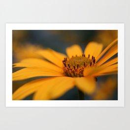 Blomming Flower Art Print