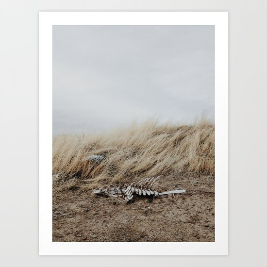 Winded Skeleton Art Print