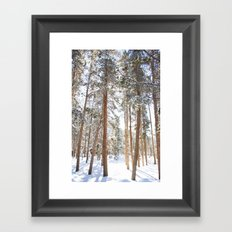 Narnia Framed Art Print