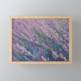 Italy 76 Framed Mini Art Print