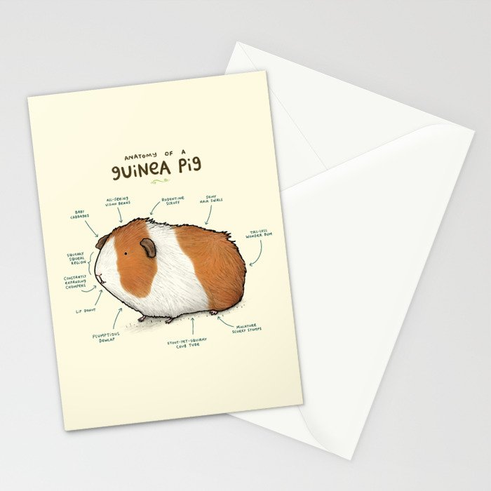 Anatomy of a Guinea Pig Stationery Cards