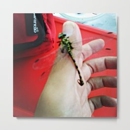 dragonfly on the finger Metal Print