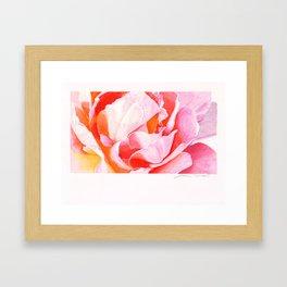 Beth's Rose Watercolor Framed Art Print