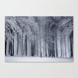 Peaceful Escape Canvas Print