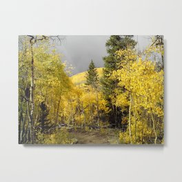 Shifting Seasons in the Rocky Mountains Metal Print