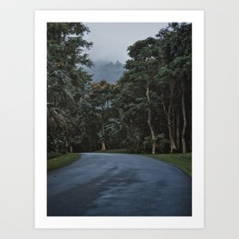 Hawaii Road To Paradise Art Print