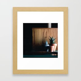 Succulent Shadows Framed Art Print