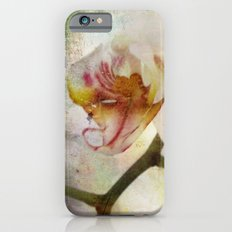 White Phalaenopsis Orchid iPhone 6s Slim Case