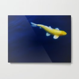 Lucky Gold Fish Metal Print