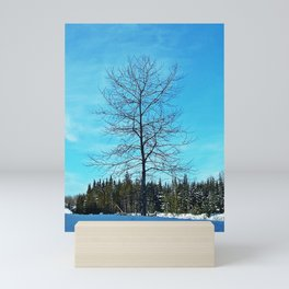 Alone and Leafless Mini Art Print