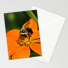 Bumblebee Hard At Work Stationery Cards