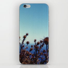 Sun-Bleached Blossom iPhone Skin