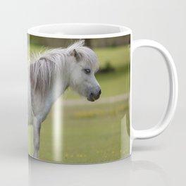 Miniature Horse. Coffee Mug