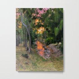 Sunset on the Swamp Metal Print