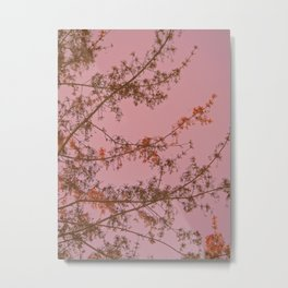 Pink Sunset Tree Abstract Metal Print