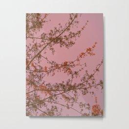 Pink Sunset Tree Abstract Metal Print