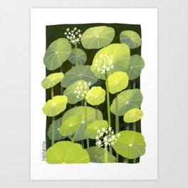 Diochondras Art Print
