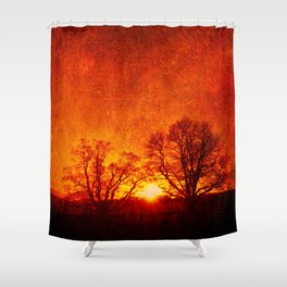 Lone trees on an English winters day  Shower Curtain