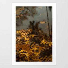 Fall Season Landscape Photography Art Print