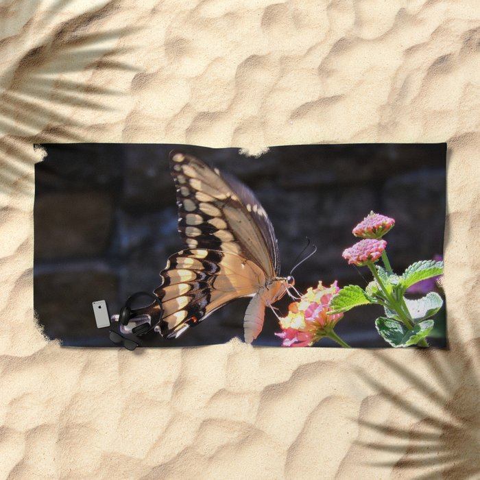 Swallowtail Overexposed Beach Towel