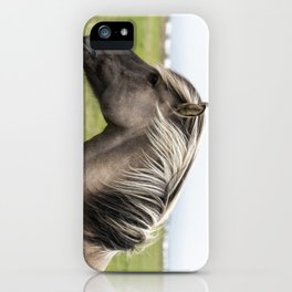 Pony in Profile iPhone Case