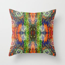 Induced Cosmic Revelations (Four Dreams, In Mutating Cycle) (Reflection) Throw Pillow