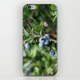 Blueberry Picking iPhone Skin