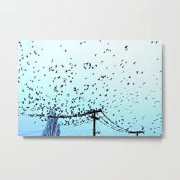 After Hours At The Wire Metal Print