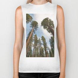 Redwood Sky - Giant Sequoia Trees Biker Tank