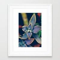 gem Framed Art Prints featuring Gem by Purdypowny