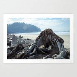 Cape Meares Beach in Oregon Art Print