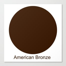 American Bronze Canvas Print