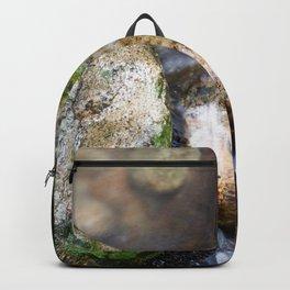 In the mood of zen Backpack