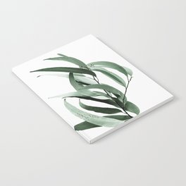 Eucalyptus - Australian gum tree Notebook