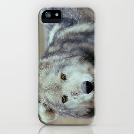 Bruised Wolf iPhone Case