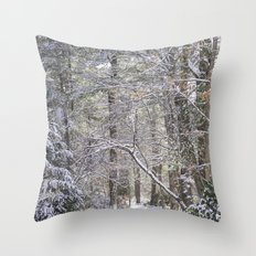 snowy road  Throw Pillow