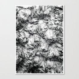 Nutous #2 Canvas Print