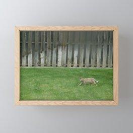 Kitty Framed Mini Art Print