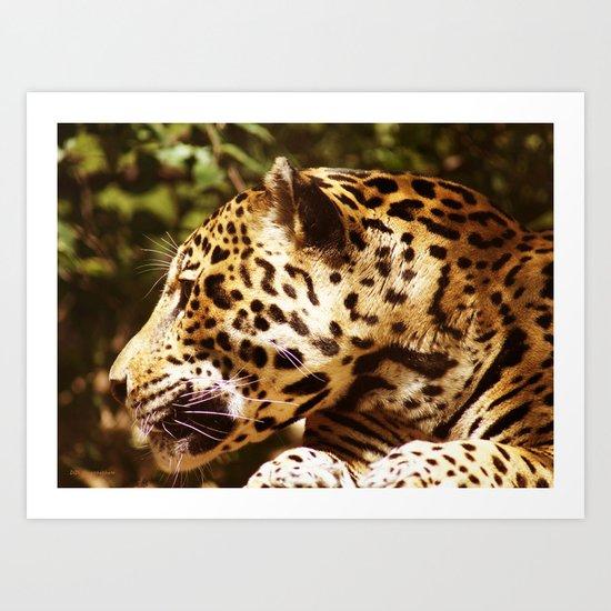 Jaguar In September Art Print