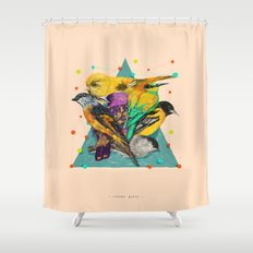 Colour Party Shower Curtain